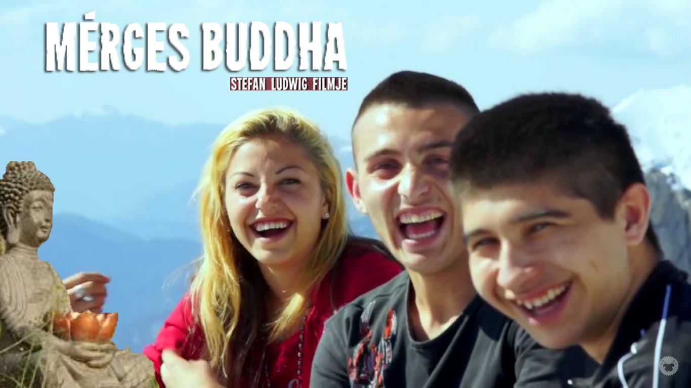 mergesbuddha_cover
